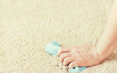 How To Detect And Remove Pet Urine Stains From Your Carpet?