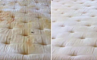 How To Quickly Clean Up The Urine Stains On The Mattress