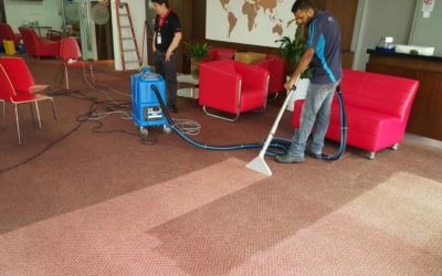 Carpet Cleaning Promotion